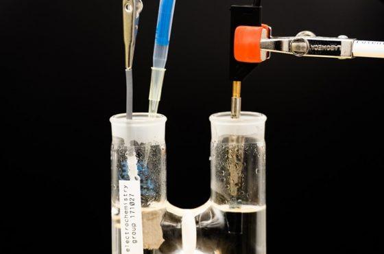 Lignin nytt supergrönt bränsle för bränslecell